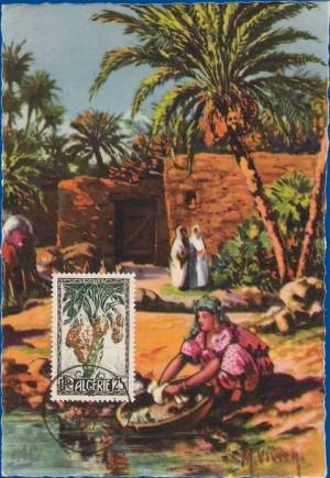 cartes postales d'algerie 1950_215