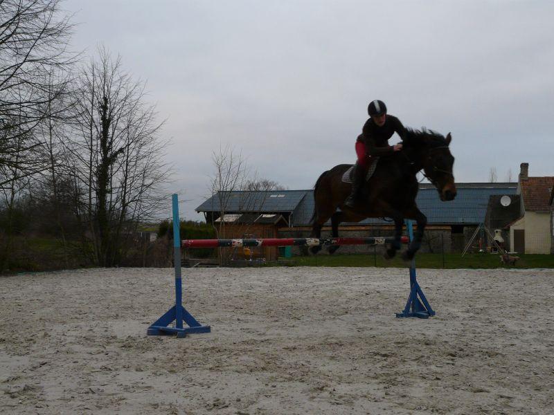Probleme avec les photos sport équitation P1000410