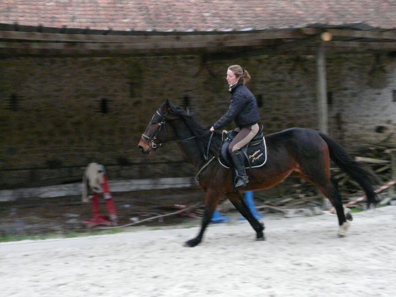 Probleme avec les photos sport équitation P1000411