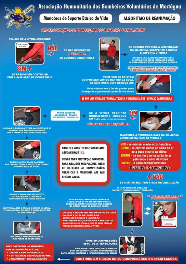Paragem Cárdio Respiratória adulto+PLS - Ilustrado Algori11