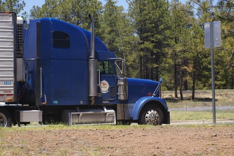 STREET VIEW : les trucks US sous toutes leurs coutures Freigh11