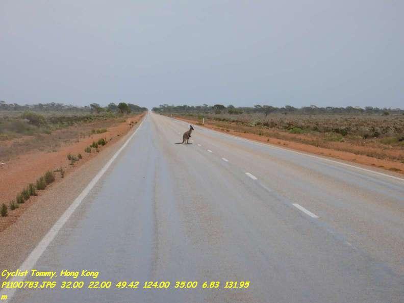 Plus grande ligne droite du monde - Australie Kangou10