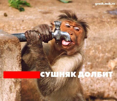 Нава - Наташенька - С Днём Рождения!!!! - Страница 6 4171210