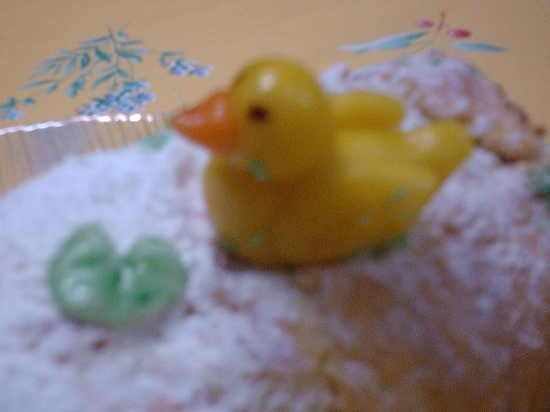 poule, coq, poussin, canard, oie Img_0920