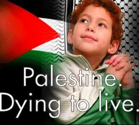 the music  of palestine 36149810