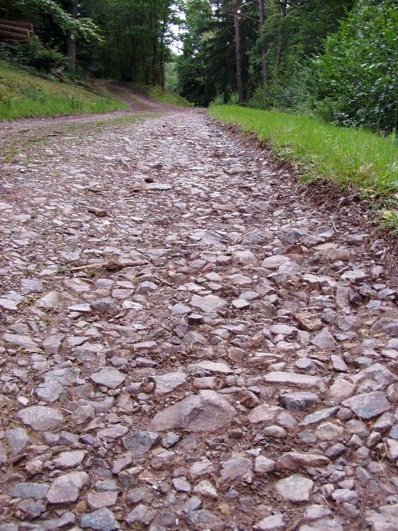 [67 - Alsace] Le Col de Steige Chemin10
