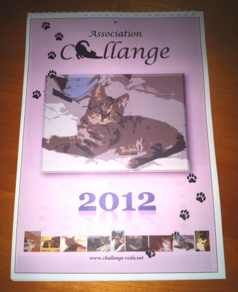 CALENDRIER 2012 pour une aide alimentaire aux protégés de CHALLANGE Img_3810