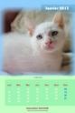 NOUVEAU - Calendriers 2013 ! 2013_018