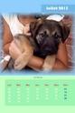 NOUVEAU - Calendriers 2013 ! 2013_022