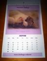 CALENDRIER 2012 pour une aide alimentaire aux protégés de CHALLANGE Img_3814