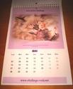 CALENDRIER 2012 pour une aide alimentaire aux protégés de CHALLANGE Img_3815