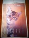 NOUVEAU - Calendrier 2012 Img_3820