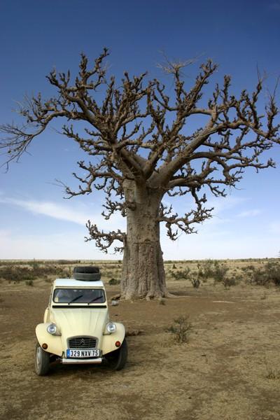 Récit d'un voyage en Afrique à bord d'une 2CV 2006 042_ma11