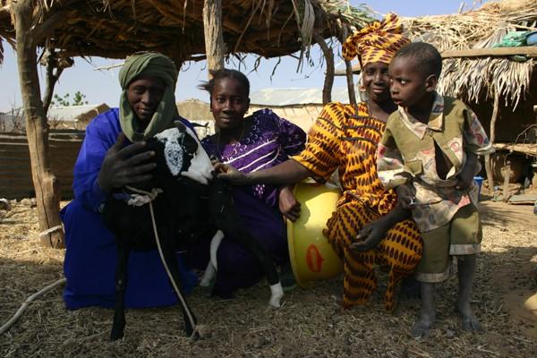 Récit d'un voyage en Afrique à bord d'une 2CV 2006 060_ch10