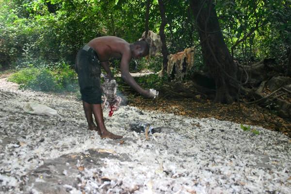 Récit d'un voyage en Afrique à bord d'une 2CV 2006 144_bu10