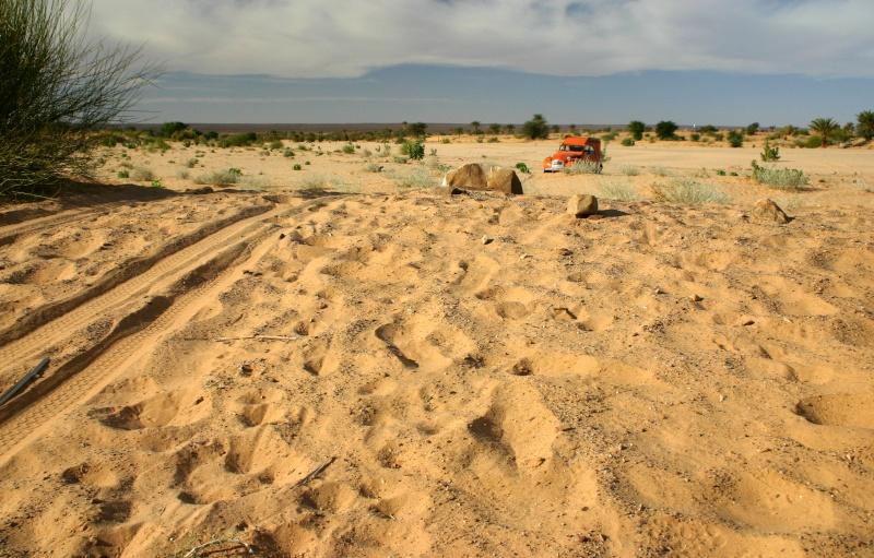 Récit d'un voyage en Afrique à bord d'une 2CV 2006 2cv_bi14