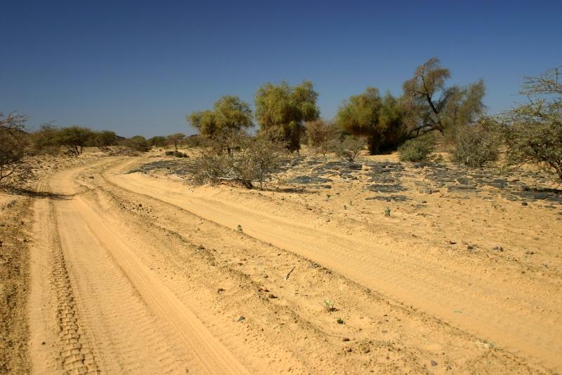 2006 Mauritanie en 4x4 bimoteur 2cv_bi19
