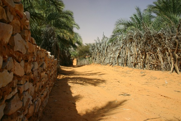 2006 Mauritanie en 4x4 bimoteur 2cv_bi34