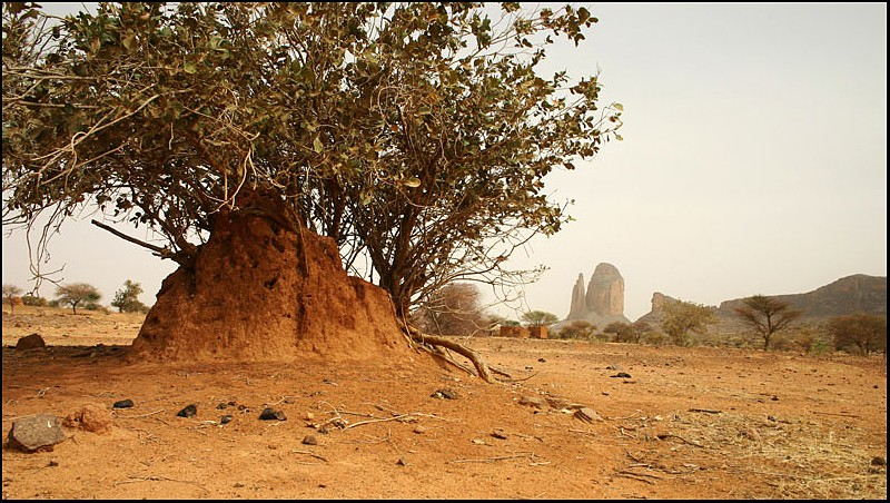 2010 Le pays Dogon en Acadiane 4x4   Hombor11