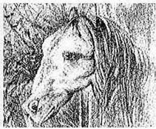 Оптические иллюзии - Страница 2 Gfghh10