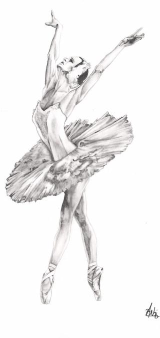 le lac des cygnes Swan_l16