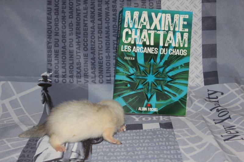 """Bree et Sweeney Todd : """" le cycle de l'homme """" de Maxime chattam - Page 3 Img_3113"""