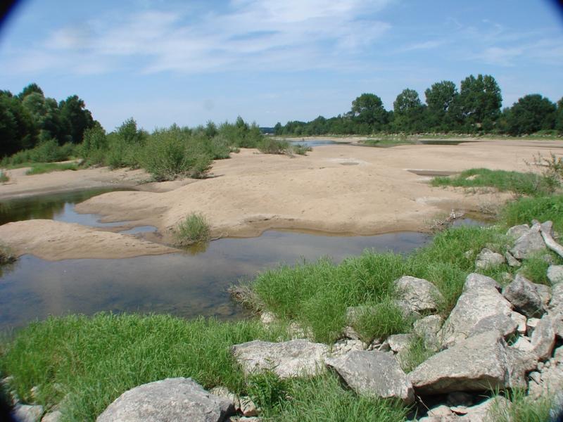 """[49 - Maine et Loire] Spot de Montjean sur Loire """"été"""" 0510"""