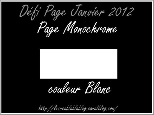 défi page Janvier : Monochrome Dafi_p15