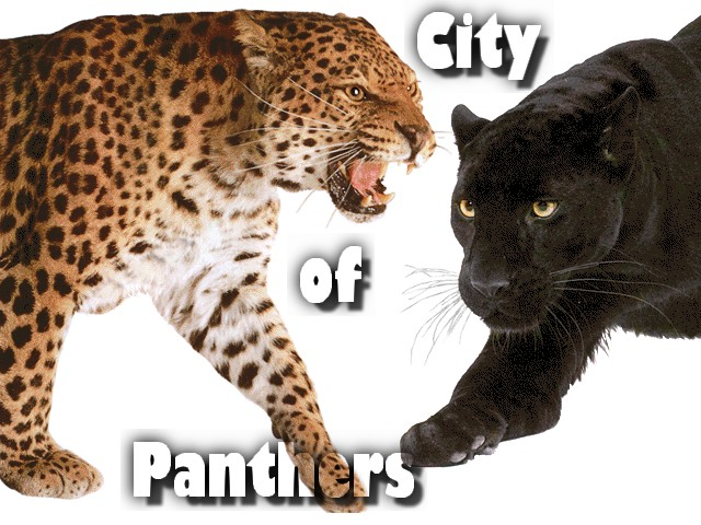 City Of Panthers