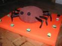 araignée - Page 2 Dscn2311