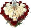 Comprend pas Roses410