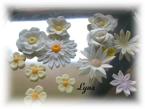 Fondant à la guimauve ou pâte à sucre pour recouvrir ou décorer des gâteaux Fleurs10