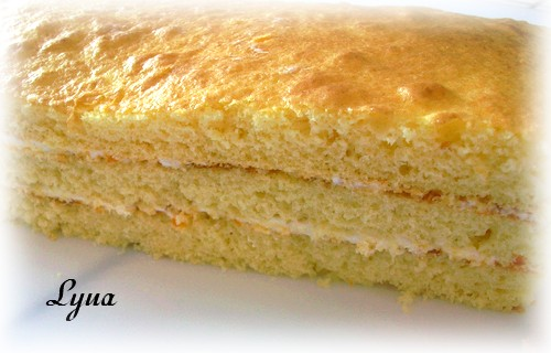 Gâteau recouvert de pâte à sucre Gateau16