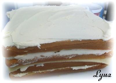 Fondant à la guimauve ou pâte à sucre pour recouvrir ou décorer des gâteaux Gateau22