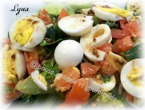 Salade tomates et oeufs Salade14
