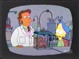 Frases de los Simpsons!! 10-3-110