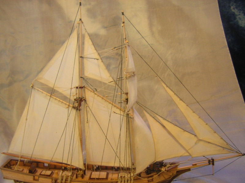 La goélette l'Albatros de 1840 au 1/55  Dscn1714