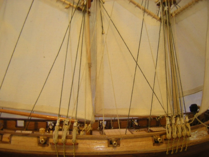La goélette l'Albatros de 1840 au 1/55  Dscn1716
