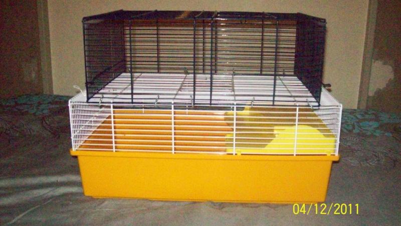 vends petite cage sur Paris avec drybed (à voir pour la RP) 100_1920