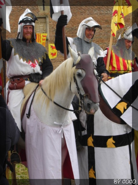 les fetes médiévales de montaner Cheval10