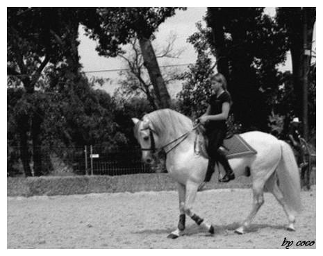 photos noir et blanc / sépia... Espagn10