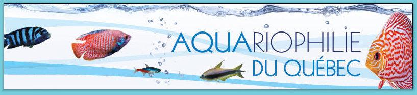 Aquariophilie du Québec