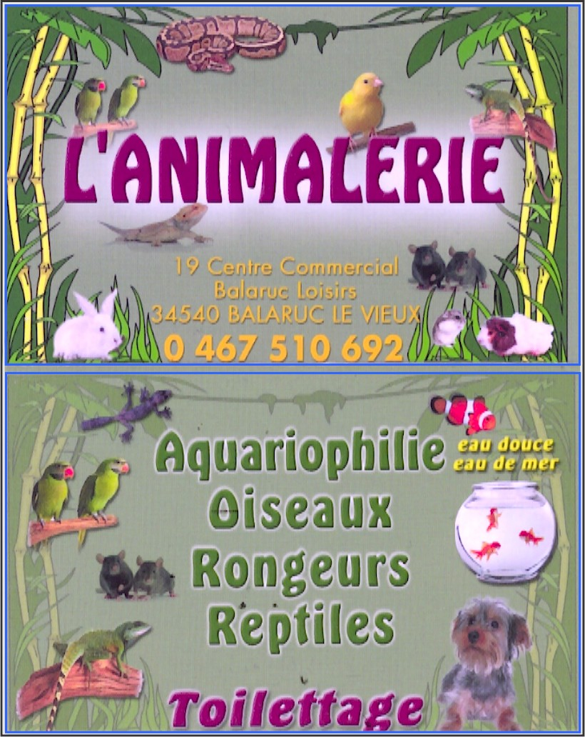"""Cessation d'activité """"L'Animalerie"""" -50% L_anim10"""