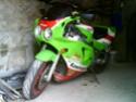 mon stinger Dsc00415
