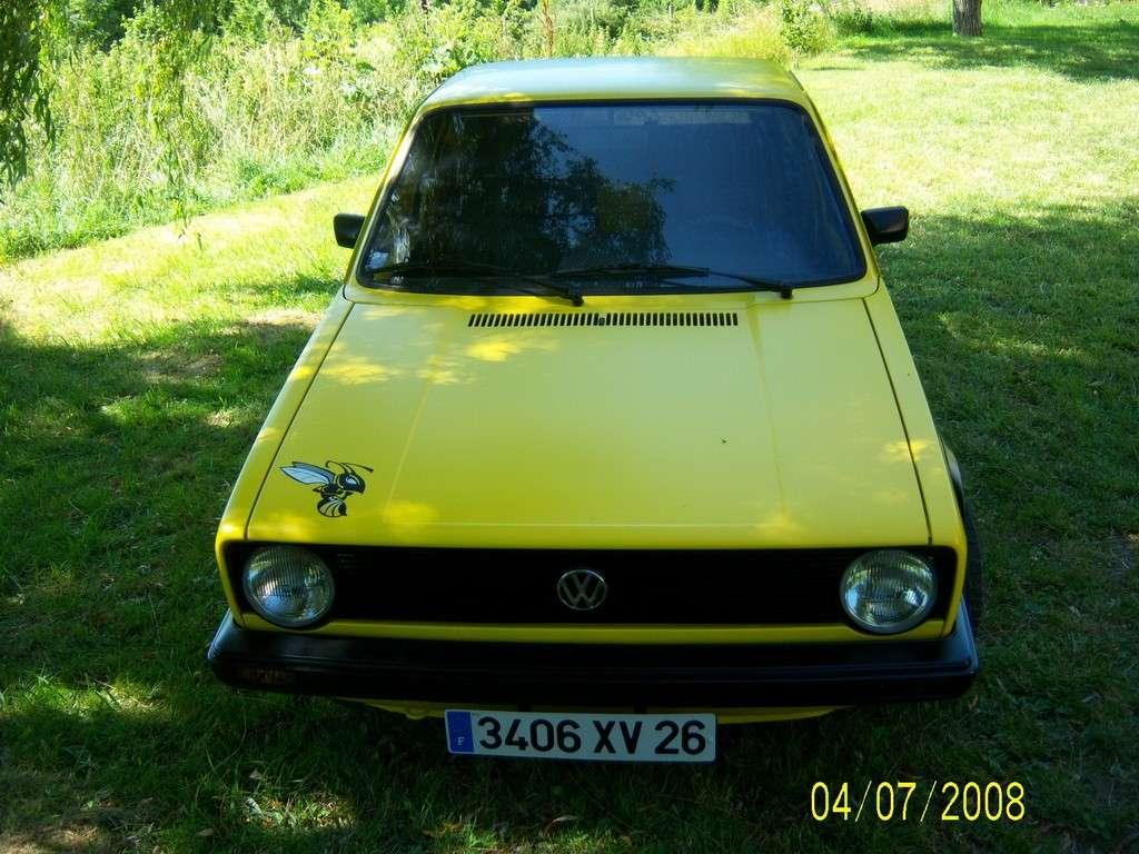 mon frelon (caddy german look) 100_2110