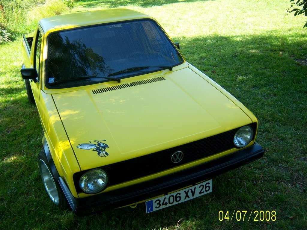 mon frelon (caddy german look) 100_2114
