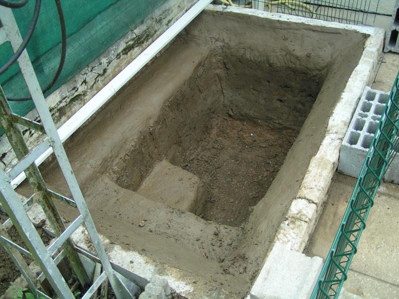 mon futur bassin d'environ 2000 litres Pict0126