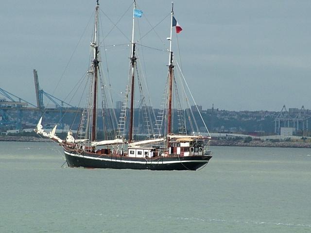 Port de Honfleur 2011-110