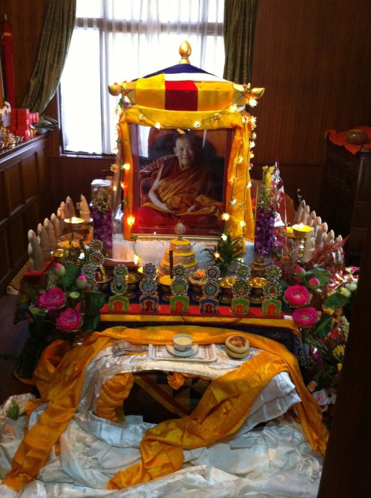 Départ de Kyabjé Trulshik Rinpoché 29880510