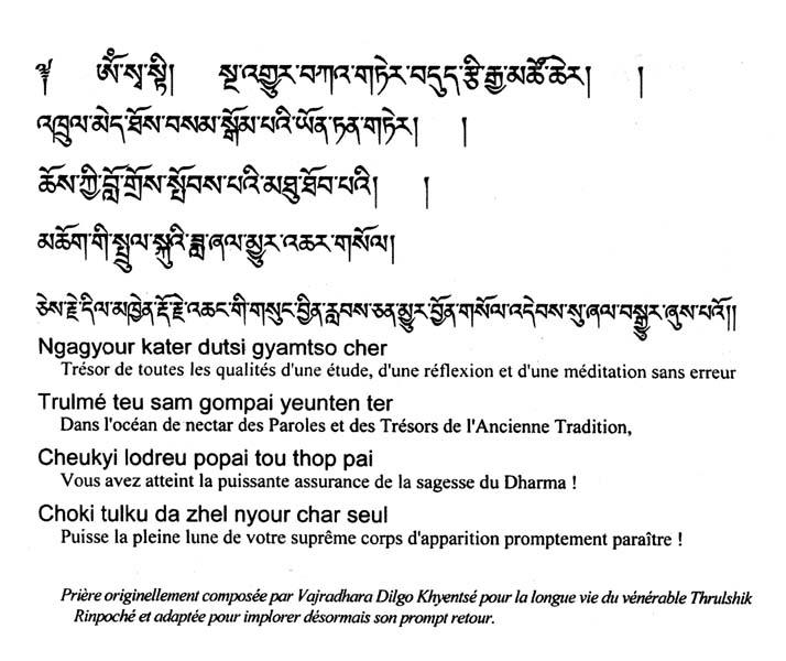 Départ de Kyabjé Trulshik Rinpoché Priare10